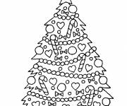 Coloring pages Green Fir
