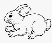 Coloring pages Cute Rabbit to cut out
