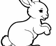 Coloring pages Funny bunny