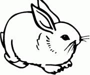 Coloring pages Sitting rabbit