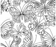 Coloring pages Adult Butterflies