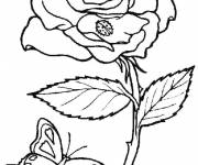 Coloring pages Difficult Butterfly and Flower
