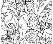 Coloring pages Difficult Nature Butterfly