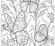 Coloring pages Multicolored butterflies