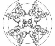 Coloring pages Easy Butterfly Mandala