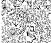 Coloring pages Adult Butterfly vector