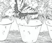 Coloring pages Adult flowers and butterfly
