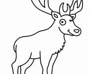 Free coloring and drawings Deer in The Easy Forest Coloring page