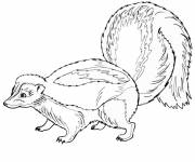 Free coloring and drawings Forest animals in pencil Coloring page