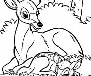 Free coloring and drawings Vector deer and his cub Coloring page
