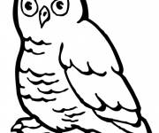 Free coloring and drawings Vector Forest Owl Coloring page