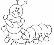 Free coloring and drawings Funny Insect Coloring page