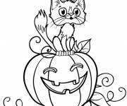 Coloring pages A black cat on the pumpkin