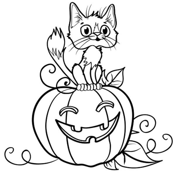 Free coloring and drawings A black cat on the pumpkin Coloring page