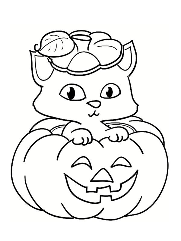 Free coloring and drawings A cute cat on The Holloween Pumpkin Coloring page