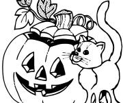 Free coloring and drawings Halloween black cat and pumpkin Coloring page