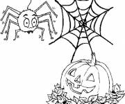 Coloring pages Halloween pumpkin and a spider