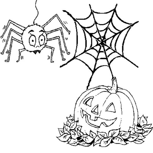 Free coloring and drawings Halloween pumpkin and a spider Coloring page
