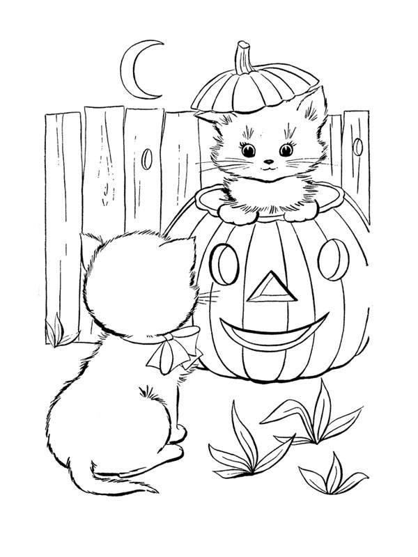 Free coloring and drawings kitten in halloween pumpkin Coloring page