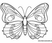 Coloring pages Beautiful Kindergarten Butterfly