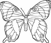 Coloring pages Butterfly to cut out