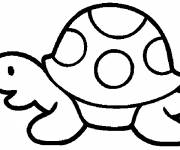 Coloring pages Vector maternal turtle