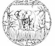 Coloring pages African Elephant Mandala