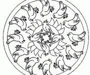 Coloring pages Birds Mandala in black and white