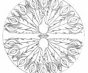 Coloring pages Stylized Peacock Mandala