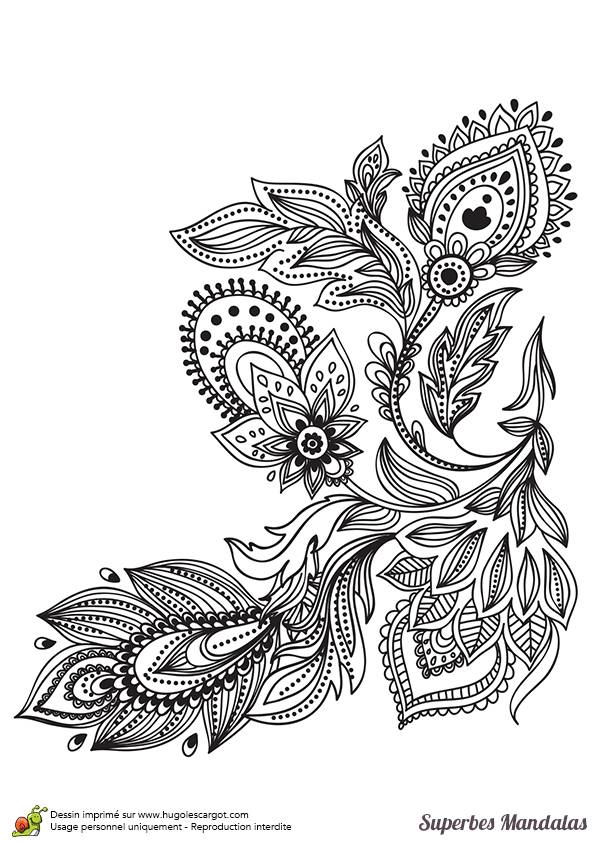 Free coloring and drawings Color Mandala Flower Plant Coloring page