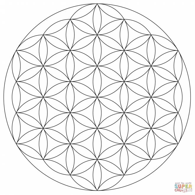 Free coloring and drawings Geometric Flower Mandala Coloring page