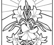 Free coloring and drawings Vector Mandala Flowers Coloring page