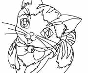 Free coloring and drawings A cute cat Coloring page