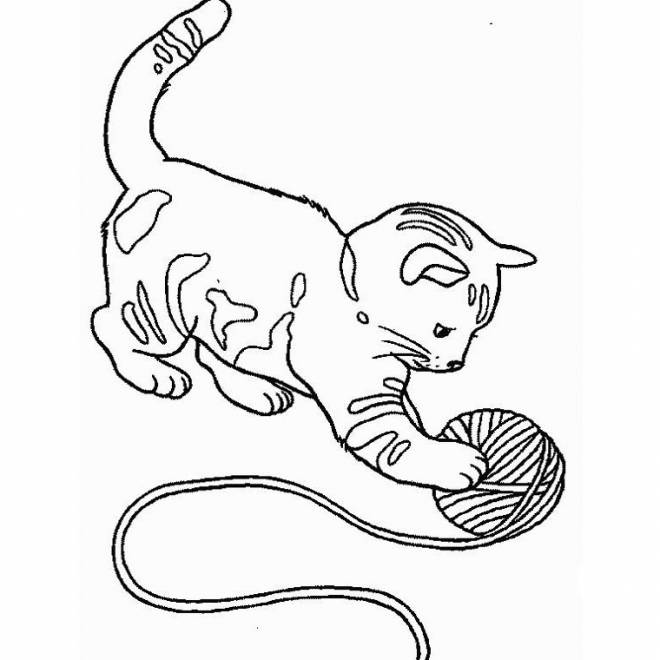 Free coloring and drawings A cute kitten playing Coloring page
