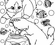 Free coloring and drawings Too cute cats and the aquarium Coloring page