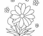 Coloring pages Kindergarten Flowers