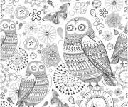 Coloring pages Adult Owl in color