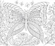Coloring pages Anti-Stress Butterflies