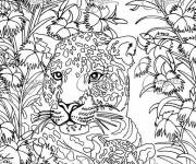 Coloring pages Zen Anti-Stress Panther