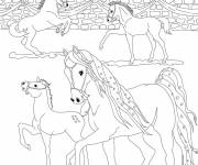 Coloring pages Bella Sara: The horses are having fun