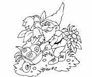 Coloring pages Gnomes and fruits