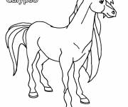 Coloring pages Horseland Calypso