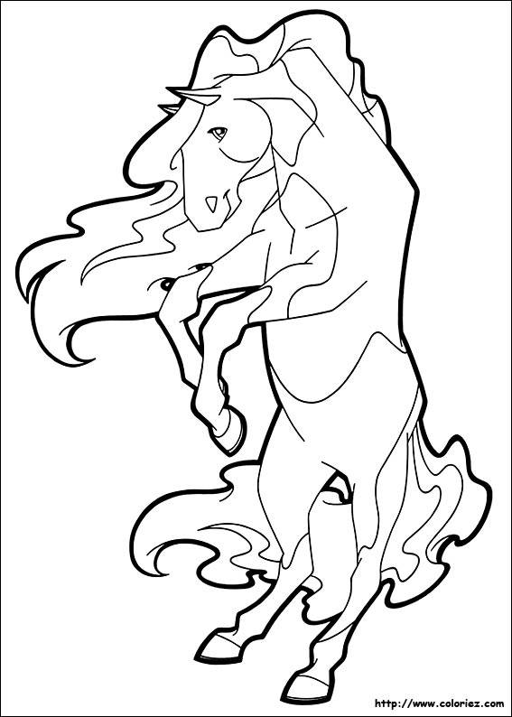 Free coloring and drawings Horseland in black and white Coloring page