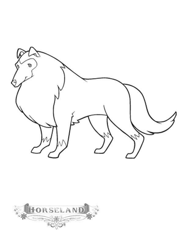 Free coloring and drawings Horseland printable drawing Coloring page