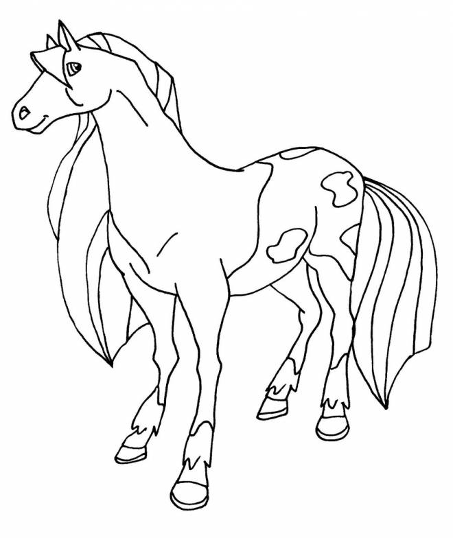 Free coloring and drawings Horseland the movie Coloring page