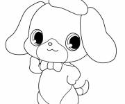 Free coloring and drawings Jewelpet for girls Coloring page