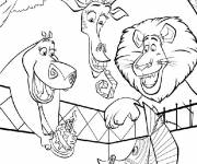 Coloring pages Madagascar Marti's birthday
