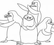 Coloring pages Madagascar pinguins online