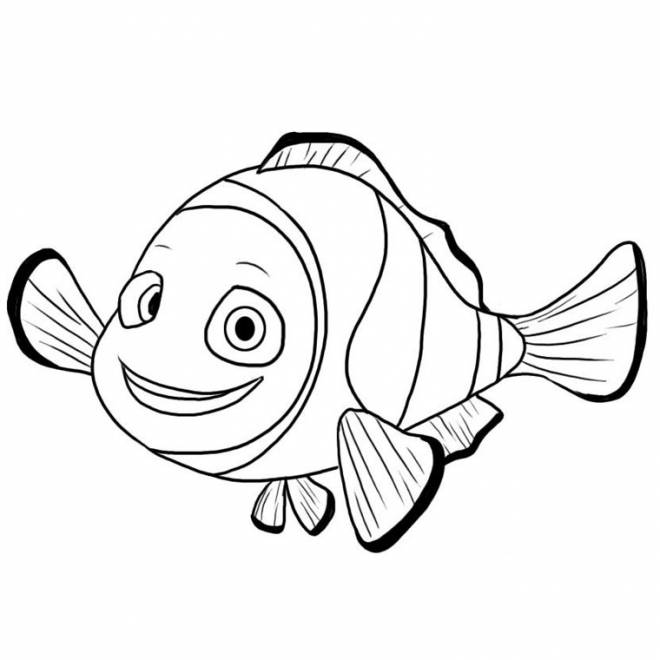 Free coloring and drawings Drawing of Nemo Coloring page