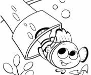 Coloring pages Easy Nemo Drawing